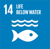 UN SDG 14 Life Below Water